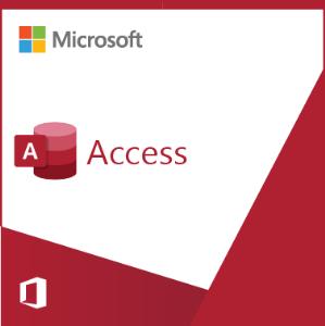 Access 2019 Sngl OLP NL
