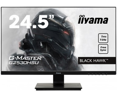 Monitor 24,5 G2530HSU-B1 TN,FHD 75Hz,1MS,HDMI,DP,USB.