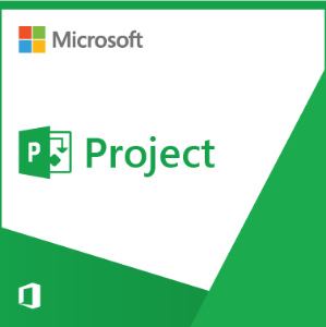 Project Professional 2019 PL
